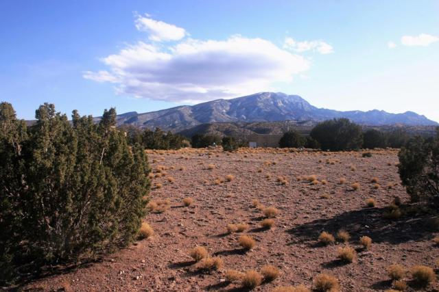 The Lands Of J Victor Pongetti, Placitas, NM 87043 (MLS #915645) :: Campbell & Campbell Real Estate Services