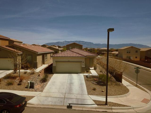 2231 Vista De Colinas Drive SE, Rio Rancho, NM 87124 (MLS #915671) :: Your Casa Team