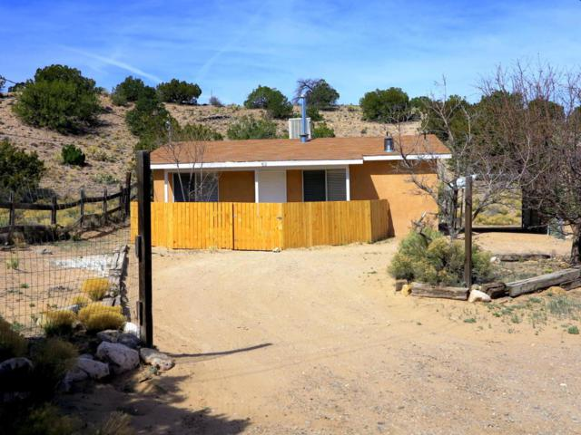 63 Loma Chata Road, Placitas, NM 87043 (MLS #915852) :: Your Casa Team
