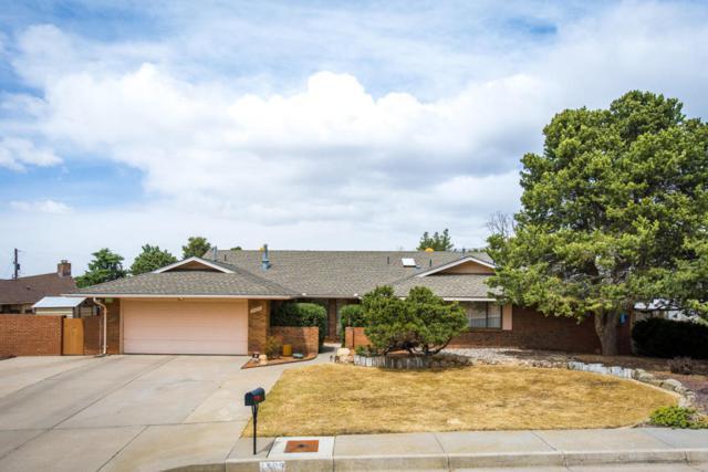 1529 Bush Court SE, Albuquerque, NM 87123 (MLS #915894) :: Your Casa Team