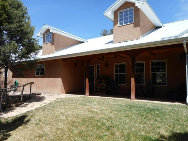 149 Via Sedillo Road, Tijeras, NM 87059 (MLS #915923) :: Campbell & Campbell Real Estate Services