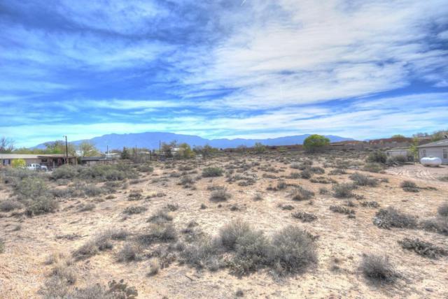 Los Ranchos Rd Ne NE, Albuquerque, NM 87113 (MLS #916072) :: Campbell & Campbell Real Estate Services