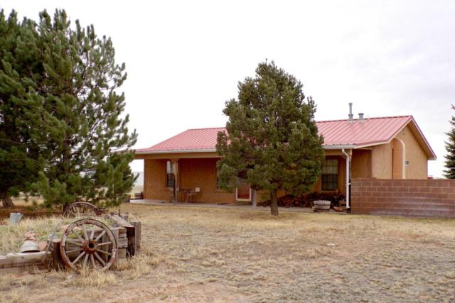 286 Thompson Road, Moriarty, NM 87035 (MLS #916182) :: Campbell & Campbell Real Estate Services