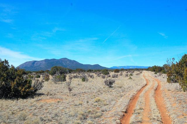 San Pedro Mountain Ranch, Edgewood, NM 87015 (MLS #916268) :: Silesha & Company