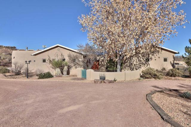 1334 La Entrada SW, Corrales, NM 87048 (MLS #916293) :: Campbell & Campbell Real Estate Services