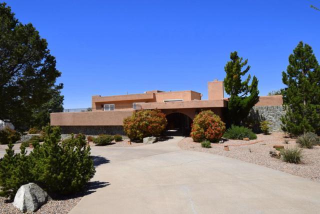 1409 Quimera Trail SE, Albuquerque, NM 87123 (MLS #916402) :: Your Casa Team