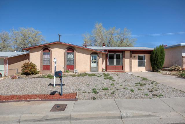 13105 Skyview Avenue NE, Albuquerque, NM 87123 (MLS #916415) :: Your Casa Team
