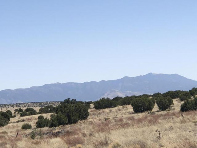 Lots 190 & 191, Magdalena, NM 87825 (MLS #916417) :: Campbell & Campbell Real Estate Services