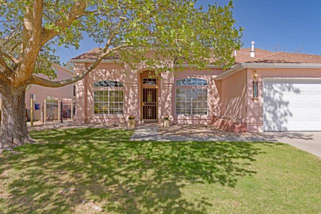 6711 Mesa Solana Place NW, Albuquerque, NM 87120 (MLS #916517) :: Your Casa Team
