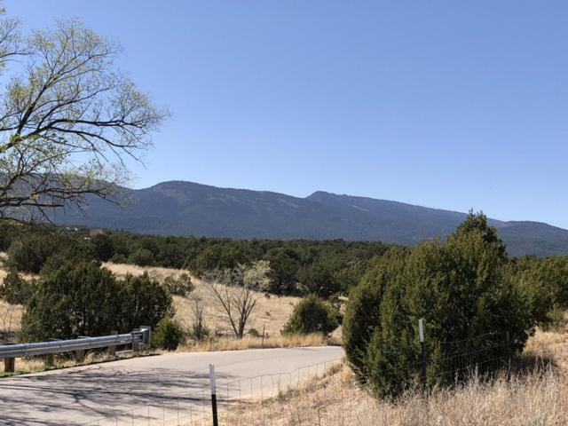 55 Riders Road, Sandia Park, NM 87047 (MLS #916527) :: Will Beecher at Keller Williams Realty