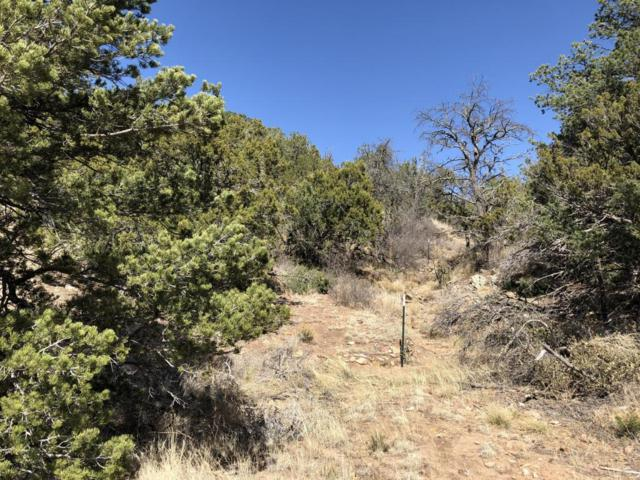 59 Riders Road, Sandia Park, NM 87047 (MLS #916528) :: Will Beecher at Keller Williams Realty