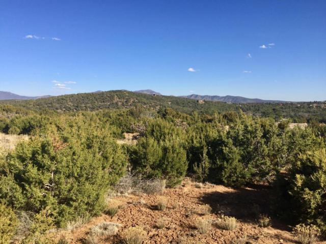 4579 La Madera Road, Sandia Park, NM 87047 (MLS #916560) :: Will Beecher at Keller Williams Realty