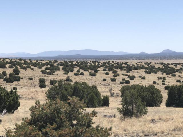 Lots 44 & 45 Pinon Springs, Magdalena, NM 87825 (MLS #916570) :: Campbell & Campbell Real Estate Services