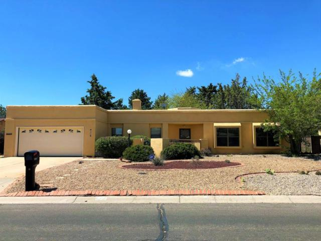 2826 Trevino Drive SE, Rio Rancho, NM 87124 (MLS #916588) :: Will Beecher at Keller Williams Realty