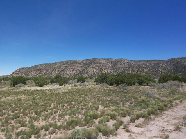 786 Highway 165, Placitas, NM 87043 (MLS #916604) :: Will Beecher at Keller Williams Realty