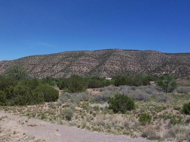788 Highway 165, Placitas, NM 87043 (MLS #916605) :: Will Beecher at Keller Williams Realty