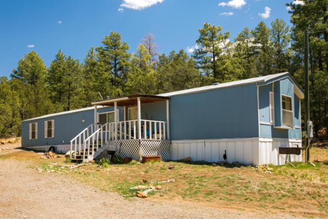 68 Anaya Road, Tijeras, NM 87059 (MLS #916876) :: Will Beecher at Keller Williams Realty