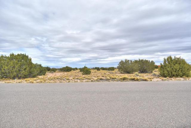 Palomino Rd Lot 28, Placitas, NM 87043 (MLS #916990) :: Campbell & Campbell Real Estate Services