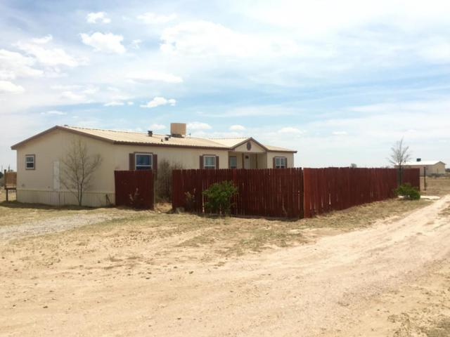 5 Toledo Avenue, Moriarty, NM 87035 (MLS #917066) :: Will Beecher at Keller Williams Realty