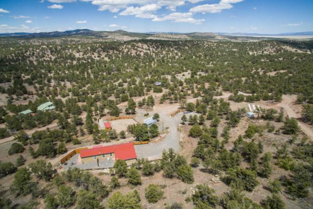 28 Log Cabin Drive, Datil, NM 87821 (MLS #917067) :: Campbell & Campbell Real Estate Services