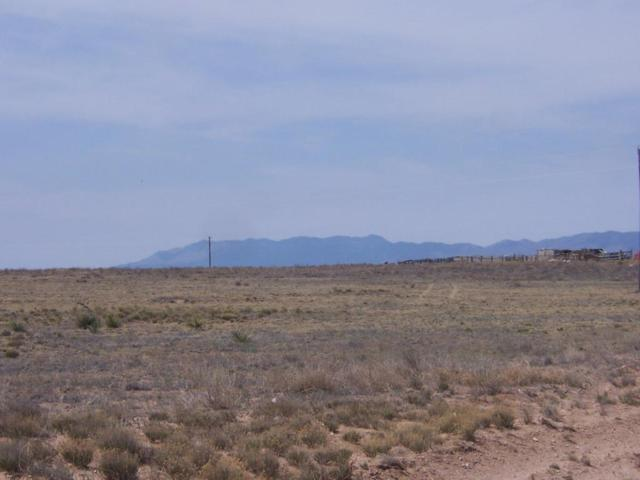 Marshall Road, Estancia, NM 87016 (MLS #917153) :: Will Beecher at Keller Williams Realty