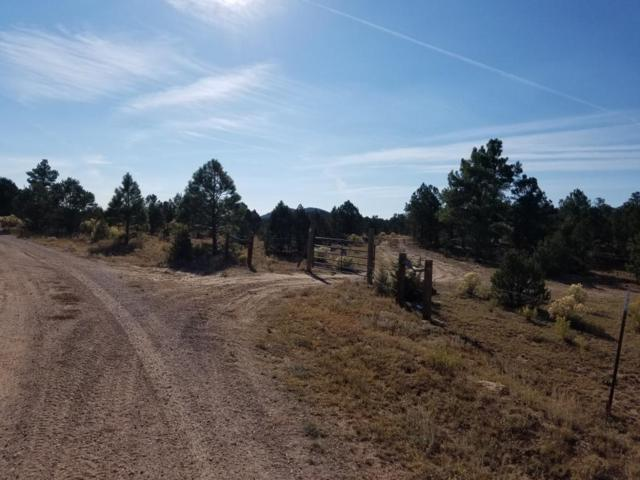 71 Mountain View Road, Pie Town, NM 87827 (MLS #917179) :: Will Beecher at Keller Williams Realty