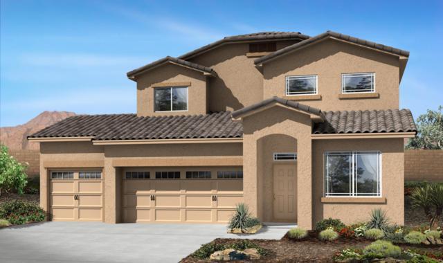 1524 Blue Spruce Drive NE, Rio Rancho, NM 87144 (MLS #917205) :: Will Beecher at Keller Williams Realty