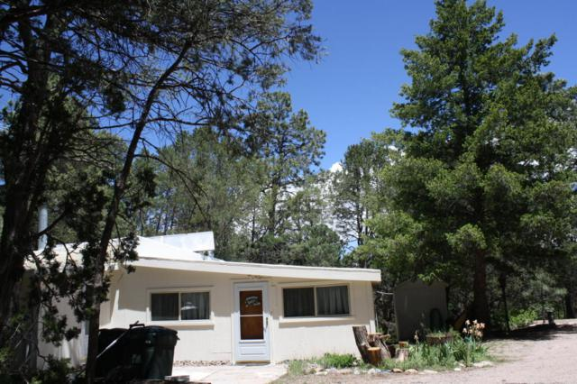 25 Pinon Cove Road, Cedar Crest, NM 87008 (MLS #917300) :: Will Beecher at Keller Williams Realty