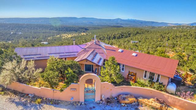 38 Calyx Lane, Cedar Crest, NM 87008 (MLS #917323) :: Campbell & Campbell Real Estate Services