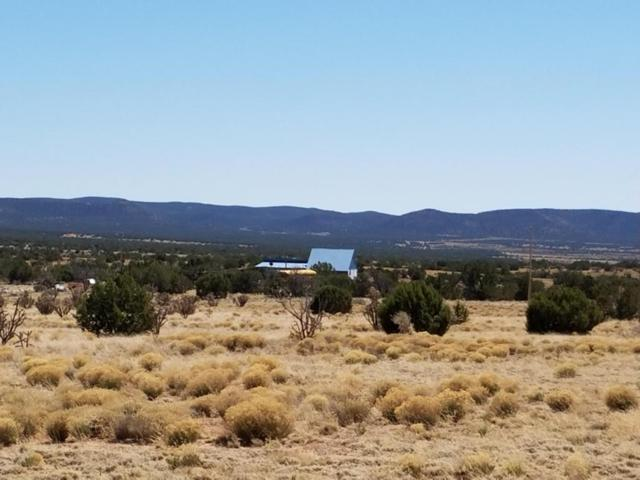 108 Cottage Loop, Mountainair, NM 87036 (MLS #917527) :: Campbell & Campbell Real Estate Services