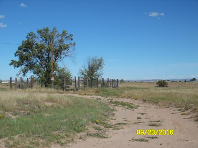 Ramsey Lane, McIntosh, NM 87032 (MLS #917613) :: Campbell & Campbell Real Estate Services