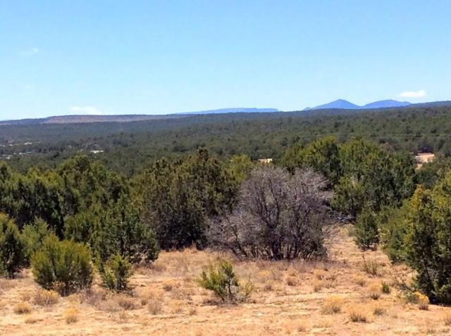 24 Cole Younger, Edgewood, NM 87015 (MLS #917782) :: The Buchman Group