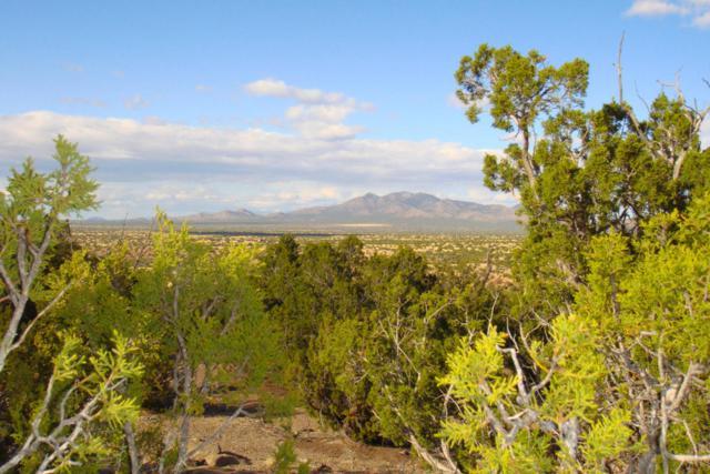 5 Via Entrada, Sandia Park, NM 87047 (MLS #917821) :: Will Beecher at Keller Williams Realty