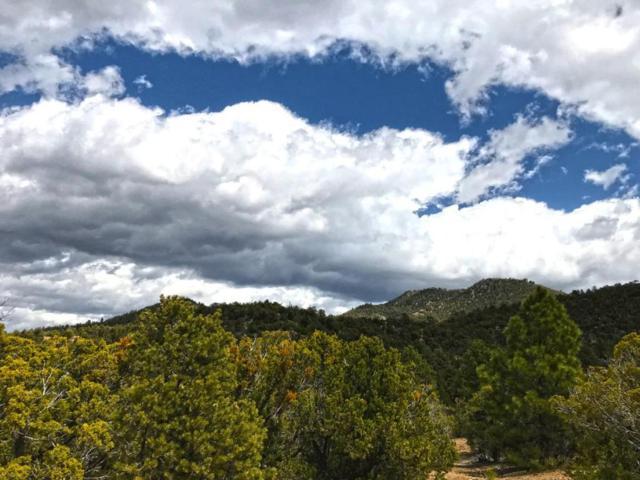 1686 Wilderness Gate Road, Santa Fe, NM 87505 (MLS #917831) :: Silesha & Company