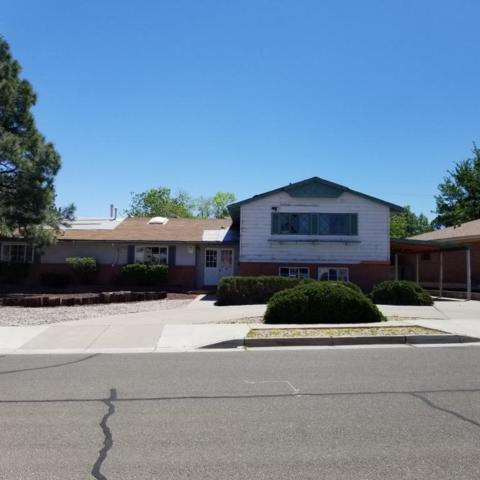 3424 Pickard Avenue NE, Albuquerque, NM 87110 (MLS #918111) :: Campbell & Campbell Real Estate Services