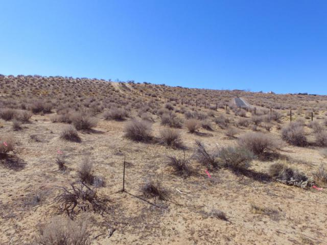 Lot 72 Sagebrush, Corrales, NM 87048 (MLS #918118) :: Campbell & Campbell Real Estate Services