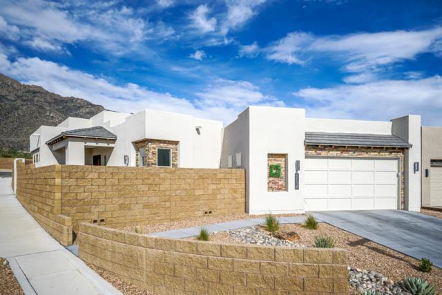 9514 Sandia Vista Drive NE, Albuquerque, NM 87122 (MLS #918401) :: Will Beecher at Keller Williams Realty