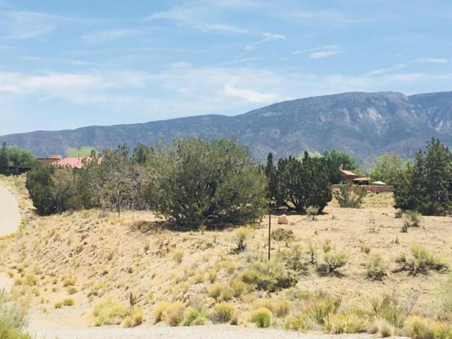 Lot 131 Anasazi Meadows, Placitas, NM 87043 (MLS #918687) :: Will Beecher at Keller Williams Realty