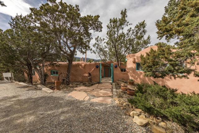 36 El Gallo, Cedar Crest, NM 87008 (MLS #918709) :: Campbell & Campbell Real Estate Services