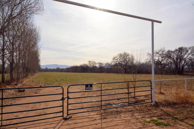 Carrasco Lane Vigil Land 10 Ac, Los Lunas, NM 87031 (MLS #918778) :: The Bigelow Team / Red Fox Realty