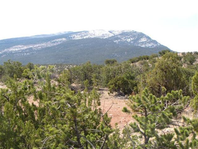2-B Camino Del Cuervo, Placitas, NM 87043 (MLS #918932) :: Campbell & Campbell Real Estate Services