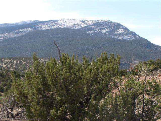 2-A Camino Del Cuervo, Placitas, NM 87043 (MLS #918933) :: Campbell & Campbell Real Estate Services