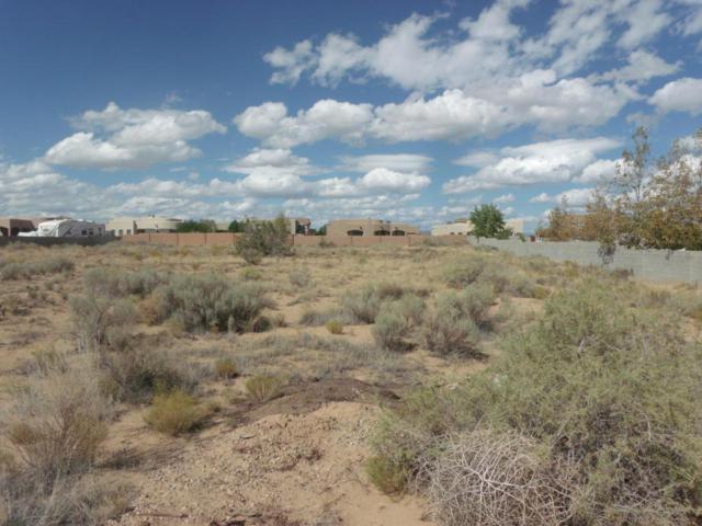 6421 Kalgan Road NE, Rio Rancho, NM 87144 (MLS #919018) :: Will Beecher at Keller Williams Realty