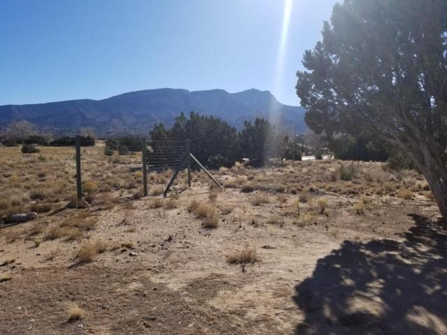 1 Tierra Madre Road, Placitas, NM 87043 (MLS #919060) :: Campbell & Campbell Real Estate Services