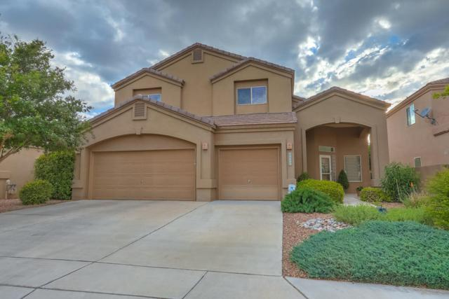 3809 Pinon Jay Court NW, Albuquerque, NM 87120 (MLS #919069) :: Your Casa Team