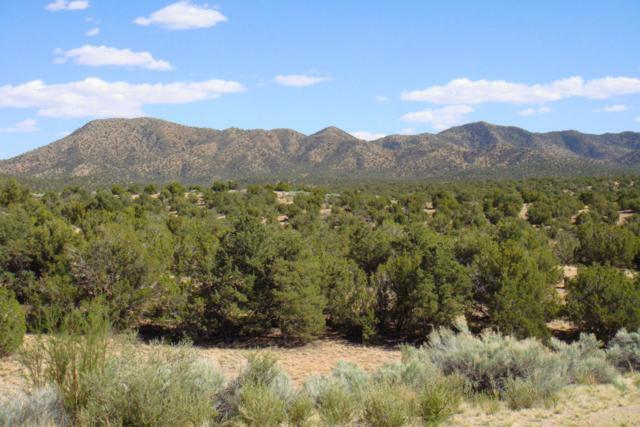 6 Rock Springs Trail, Sandia Park, NM 87047 (MLS #919244) :: Will Beecher at Keller Williams Realty