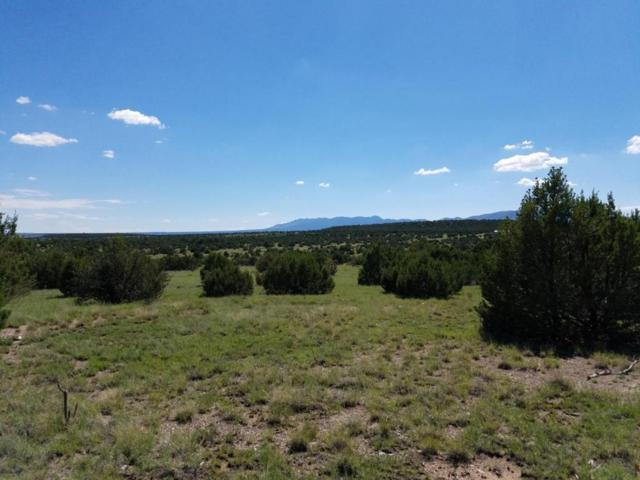 Applewood, Tajique, NM 87016 (MLS #919283) :: Campbell & Campbell Real Estate Services