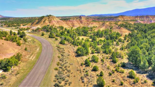 0 Sr 96, Regina, NM 87046 (MLS #919909) :: The Bigelow Team / Realty One of New Mexico
