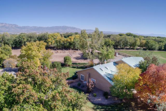 8714 Rio Grande Boulevard NW, Los Ranchos, NM 87114 (MLS #920136) :: Campbell & Campbell Real Estate Services
