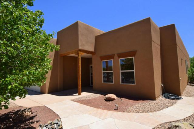 1006 Prairie Zinnia Drive, Bernalillo, NM 87004 (MLS #920223) :: Campbell & Campbell Real Estate Services